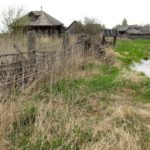 В Кунгурском районе аграрии восстанавливают заброшенные поля