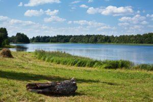 В России создадут пять национальных парков в 2019 году