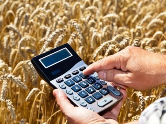 Почти 14 млрд рублей распределены между 83 субъектами Федерации на поддержку фермеров и развитие сельской кооперации