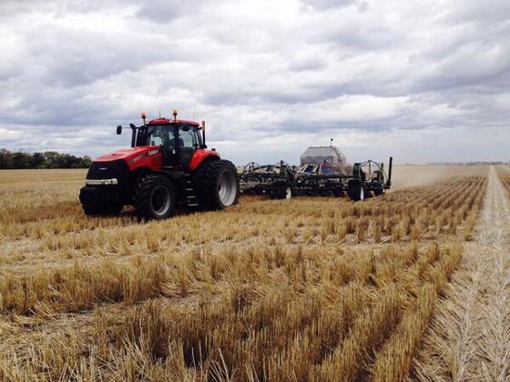 Россия планирует ограничить экспорт зерна
