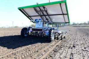 Почему роботы для прополки вряд ли скоро заменят гербициды в масштабном АПК